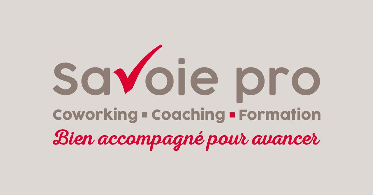 Savoie Pro : rédaction de posts LinkedIn